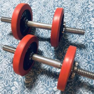 ダイエット成功~8か月で6キロ!ズボラな私流の、楽に痩せた方法