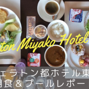 【シェラトン都ホテル東京 宿泊記】プラチナ特典の朝食・プール・都ヘルスクラブをレポート