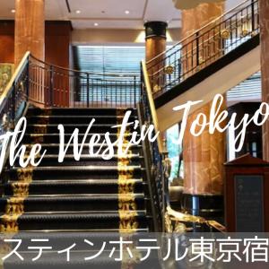 【ウェスティンホテル東京】ポイント無料宿泊でコーナーエグゼクティブルームにアップグレード♡