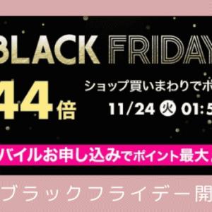 【楽天ブラックフライデー】ふるさと納税するチャンス!11/20はポイントざくざく♡