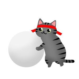【運動会】大玉を転がす猫