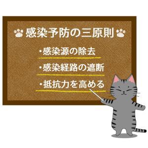 猫が教える感染予防三原則のイラスト