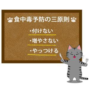 猫が教える食中毒予防三原則のイラスト