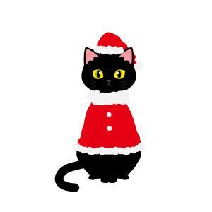 【クリスマス】赤いサンタ服を着た猫