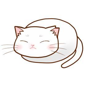 まんじゅうさくら猫 全身B(白)