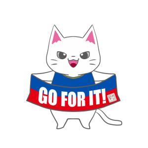 【マリノスカラー風】ユニフォーム応援猫