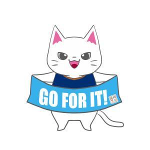 【横浜FCカラー風】ユニフォーム応援猫