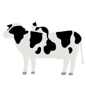 牛の背中に座る猫のイラスト