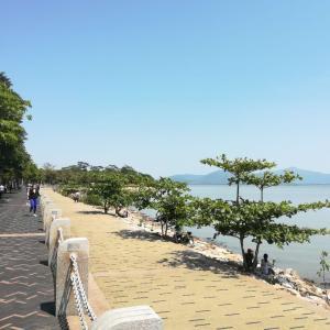 旦那の深圳海沿い散歩 ヒヒィ~ン