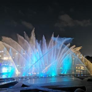 深圳の夜空の下で見る、ナイトショー