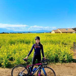 ロードバイクで三浦半島一周100km!