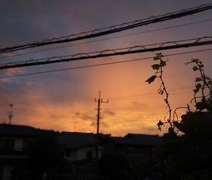 ☆夜空に光る物体「動画」