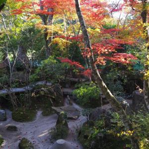 紅葉の季節 京都大原 宝泉院 2019