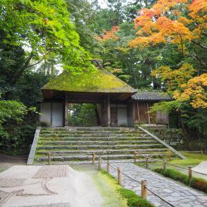 紅葉の季節 京都 蹴上~哲学の道 散策