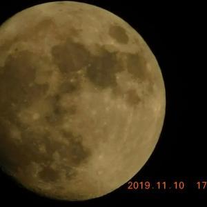 今宵は黄金の月