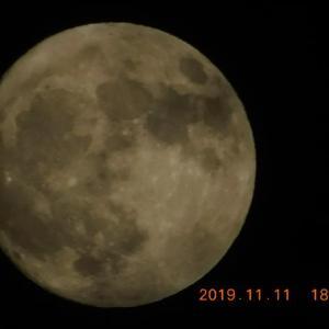 うっそでしょ。出た。満月の月の前夜