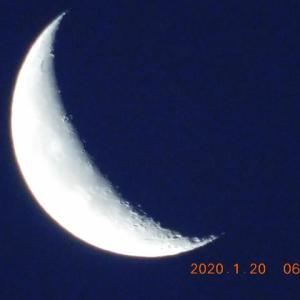 月が綺麗ですね!下弦の月の翌日です。