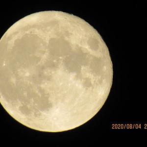 8月の満月、Mr.Moonligt!