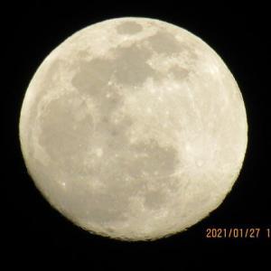 Mr.Moonligt. 満月の前日