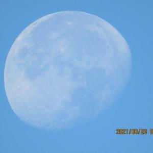 青空の月 2021.06.28