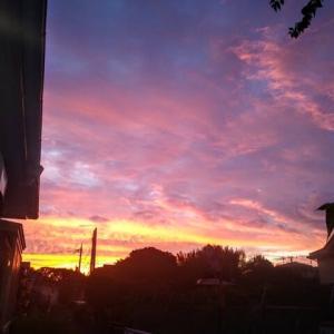 夕陽が綺麗ですね。