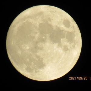 中秋の名月の前日