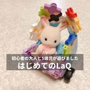 知育ブロックLaQで初心者の大人と5歳児が遊んだ感想!可愛く作れてお人形遊びにもよき♡