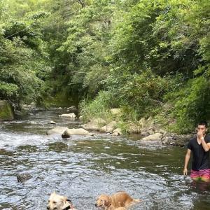 ゴールデンドッグファームで川遊び