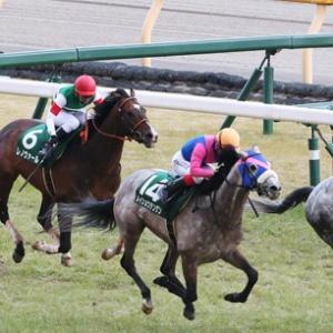 ダイヤモンドS(2021) ◎ブラックマジック/京都牝馬S(2021) ◎リリーバレロ
