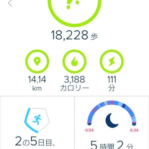 今日の歩数 2018/6/5