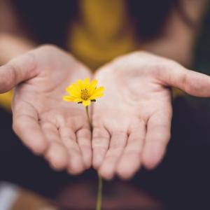 【人に与えるの意味とは?】日常の中で誰でも簡単にできる小さな習慣