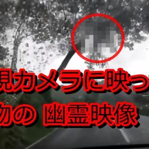 本物の心霊動画は実在した!1年間で500万回再生された監視カメラの幽霊映像