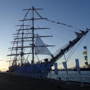 大阪港 中央突堤に帆船ダル・ムウォジェジが入港していました