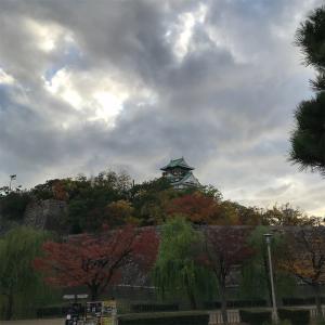 紅葉狩り(大阪城公園)