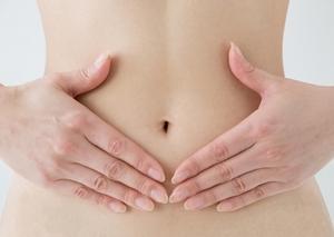 育毛×ストレス×乳酸菌 効果が期待できるのには「 腸内フローラ 」の活躍は欠かせない