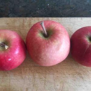 Red Loveという変わったりんご
