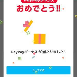 PayPayボーナス当たりました!
