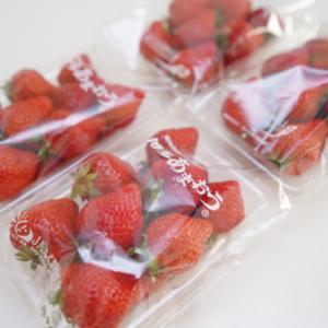 【ふるさと納税返礼品】泉佐野市からイチゴ4パック届きました♪