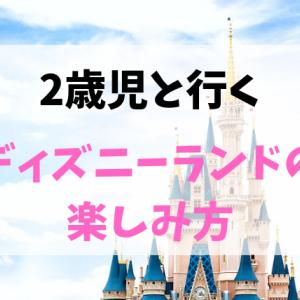 【2歳児とディズニーランド】おすすめアトラクション&レストラン