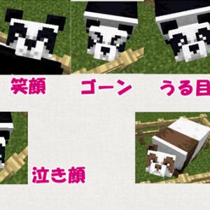 [マイクラ] パンダの遺伝解明!普通の顔から茶色が生まれる!