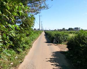 Fe塔 八回線―鎌倉街道