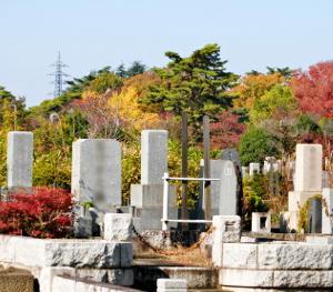 Fe塔 霊園周辺―晩秋