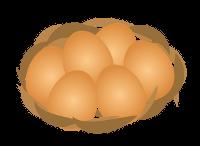 北の離れ 平飼い卵―アニマルウェルフェア