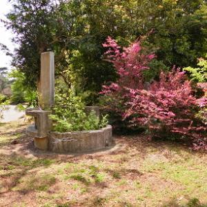 霊園彷徨―16区水場の春