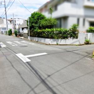Fe塔 初夏の新緑と「新」江戸街道コース