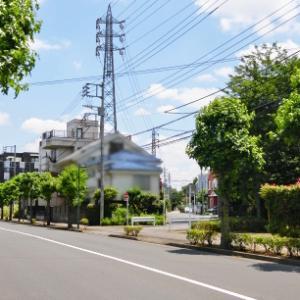Fe塔 初夏の新緑と「古」江戸街道コース 2