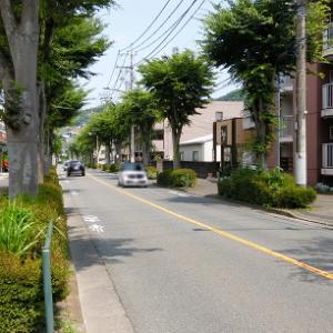Fe塔 北野街道