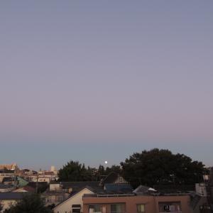 今日は月見酒の日。満月を見てはいけない?