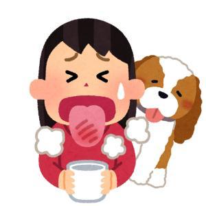 ラーメンを食べる時、必ずこっちがすすったタイミングで話しかけて来るのやめてほしい