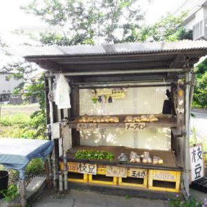 無人販売をしてる野菜の盗難が多くて自販機を設置した。そしたら子連れの女の人が近寄ってきて…